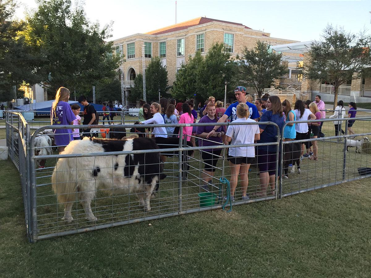 Almost 500 students stopped by the petting zoo on Wednesday evening.
